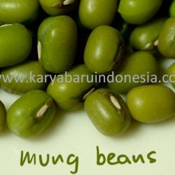 Supplier Kacang Hijau - Distributor Kacang Hijau - Agen Grosir